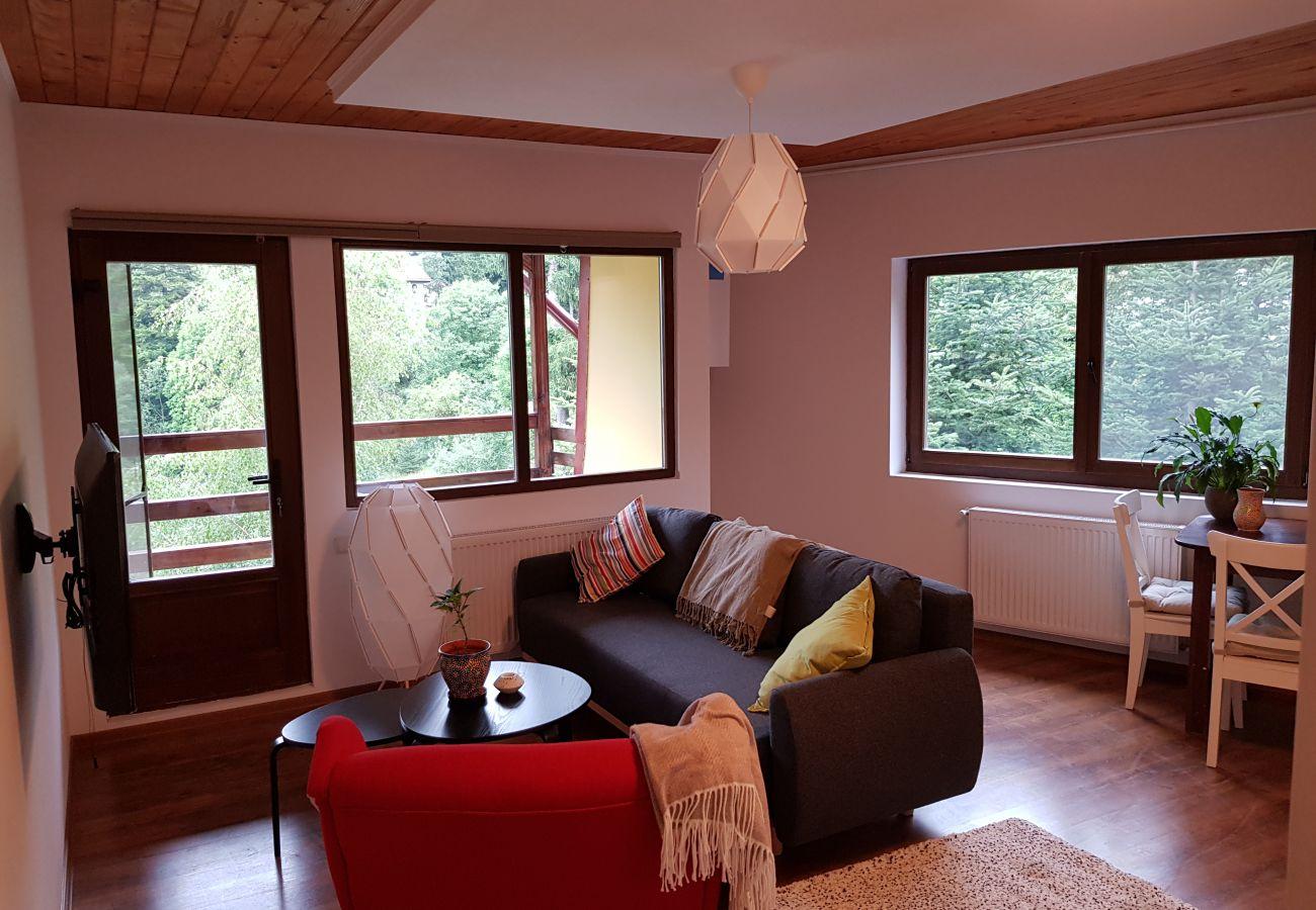 Apartamento en Sinaia - Olala Forest Apartment 1.1