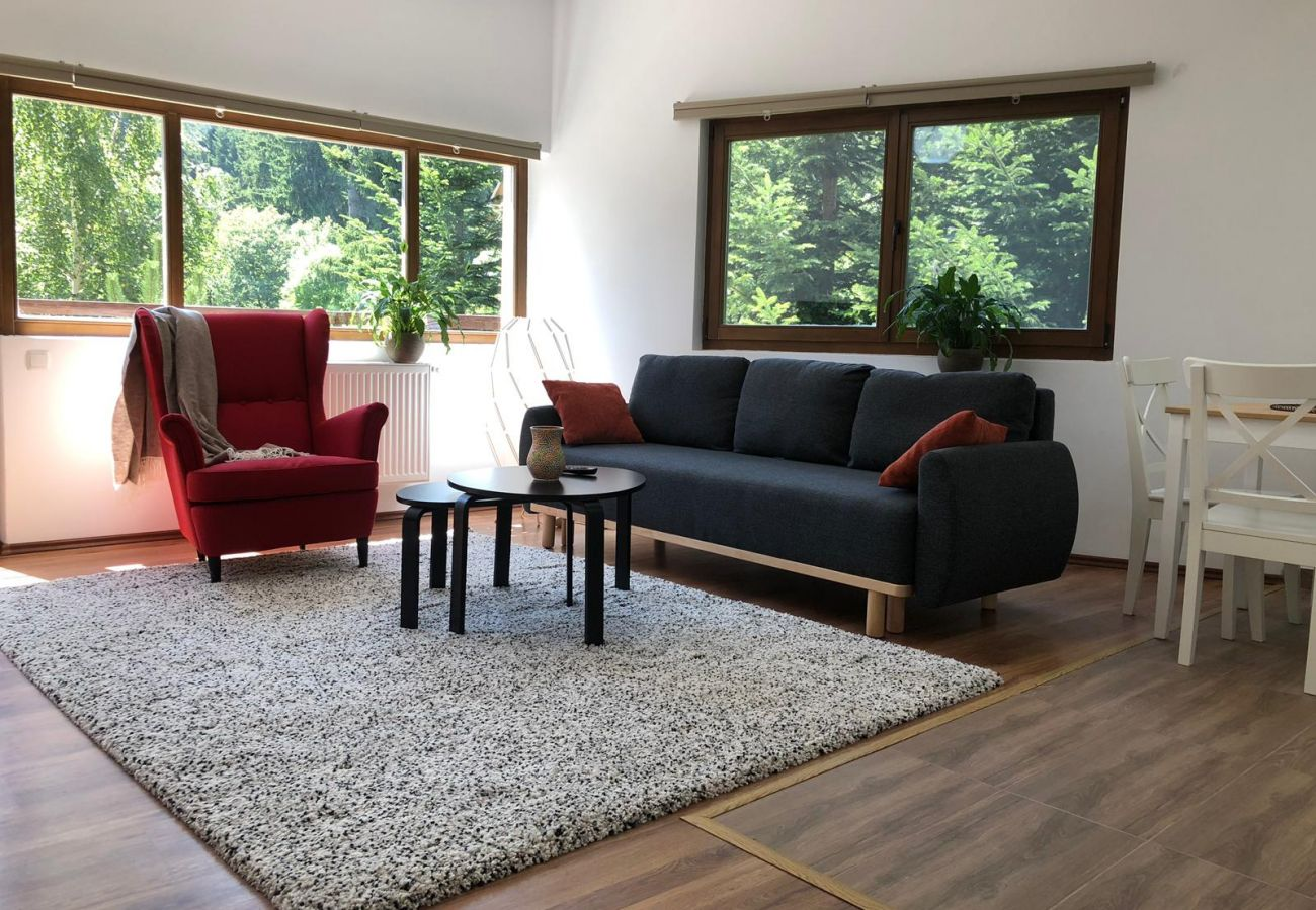 Appartement à Sinaia - Olala Forest Apartment 1.1