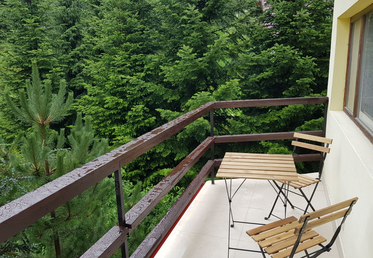 Apartment in Sinaia - Olala Forest Apartment G1